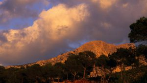Auf Entdeckungstour der romantischsten Plätze der Provence!