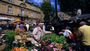 The Flower Market in Aix-en-Provence