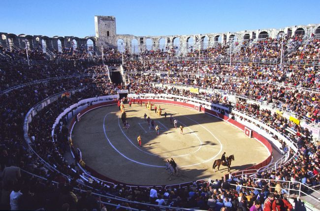 The arenas