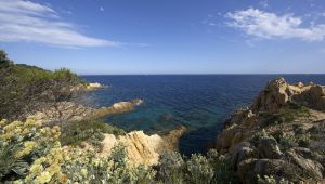 Escapade by the Sea on the Var Coast