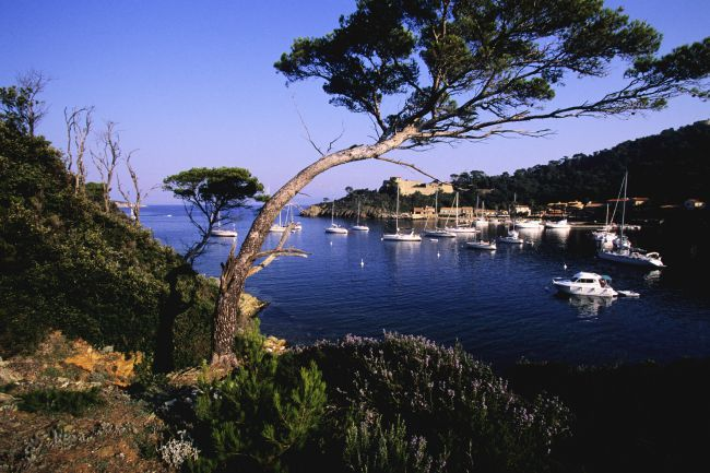 Porquerolles : the Jewel in the Crown of the Golden Islands