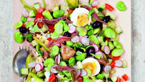 Provence. The Best Recipes – Salade Niçoise
