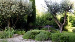 Our Selection of the Most Beautiful Gardens of Provence