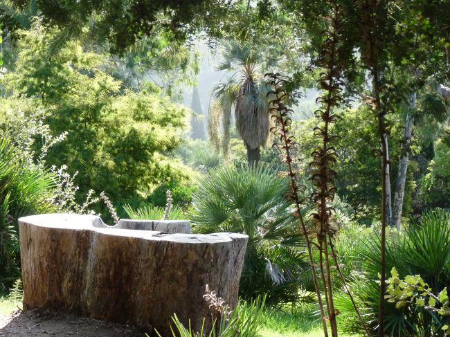 "The famous ""Mediterranean garden"