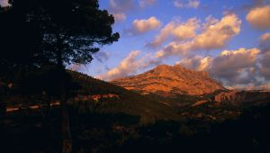 Provence Style : A Vespa Getaway between the Alpilles and the Sainte-Victoire mountain
