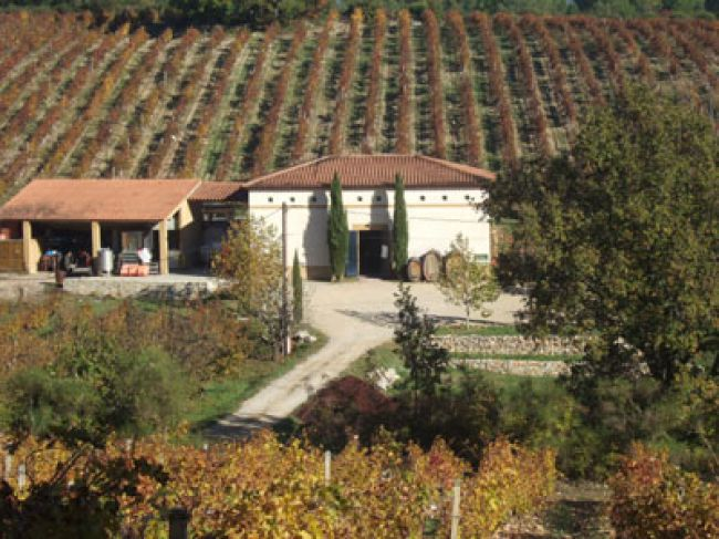Quality Wines at the Domaine du Val d'Iris Winery