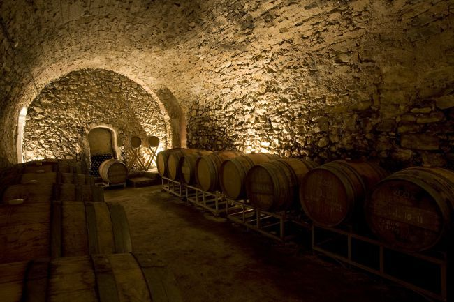 The cellars of the domain