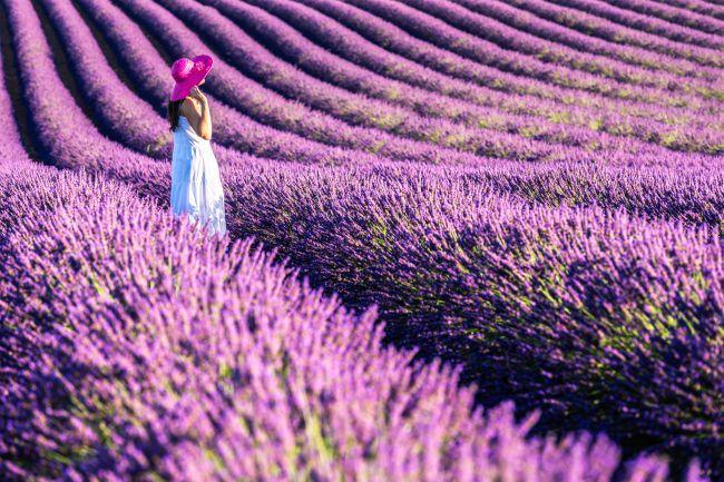 Beauty break: choosing your summer fragrance