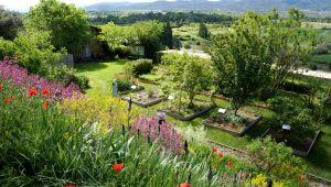 Introducción al colorante vegetal en el Jardín Conservatorio de las Plantas Tintóreas