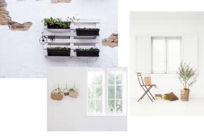 Sublimer vos plantes