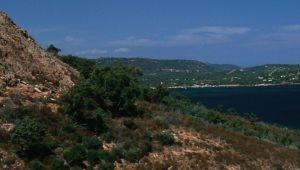 Balade olfactive dans le maquis Corse