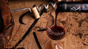 Domaine de Régusse: des vins au gré des envies!