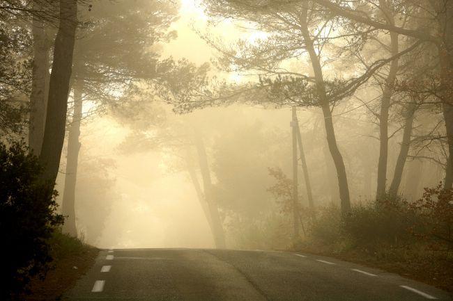 Les paysages de Provence à l'heure d'automne