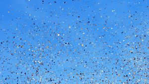 Notre sélection des fêtes provençales à ne pas manquer en février