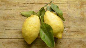 Le cédrat, ce fruit imparfait qui a tout bon