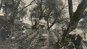 Créer un parfum, Grasse en images d'archives