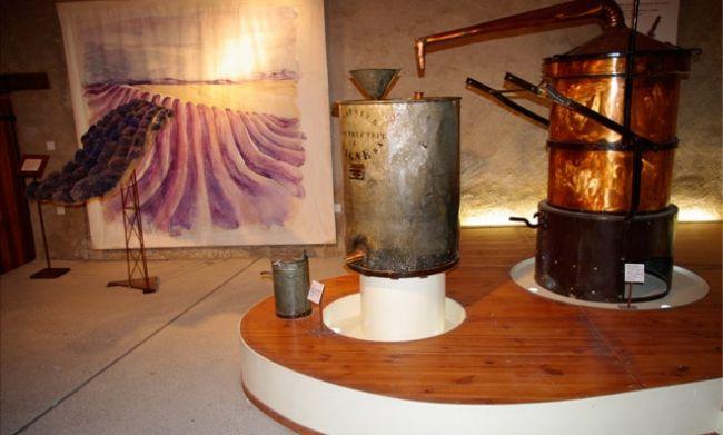 Musée de Salagon