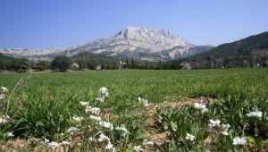 Virée romantique à Aix-en-Provence