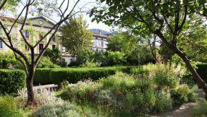 Invitation au voyage au jardin des Cordeliers