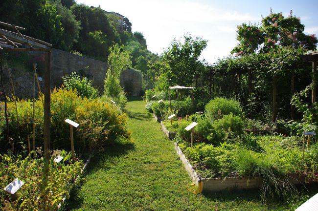 Initiation à la couleur végétale au Jardin Conservatoire des Plantes Tinctoriales