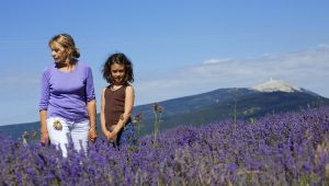 La mère provençale : source de toute inspiration !