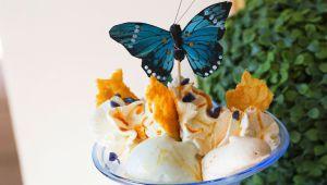 ミッシェル・ペリエールの絶品スイーツ ラベンダーのアイスクリーム