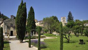 ヨーロッパ香科大学