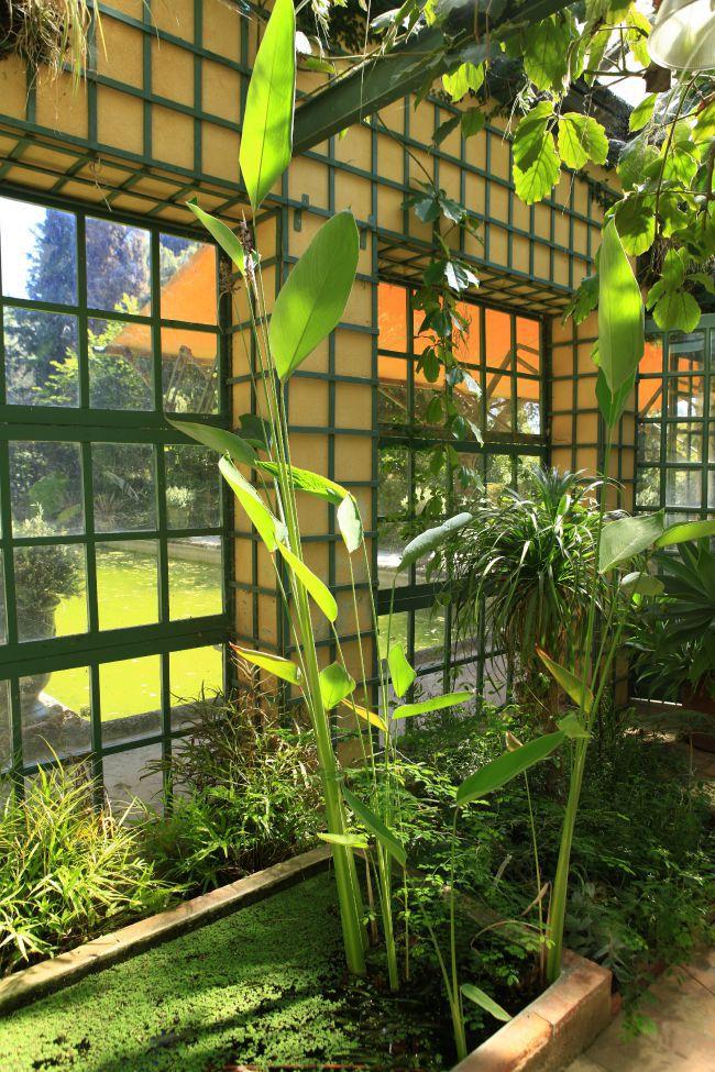 マドンヌ温室庭園