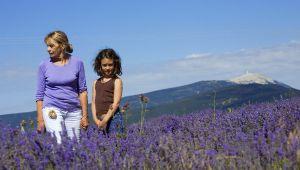 De Provençaalse moeder: bron van alle inspiratie!