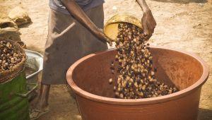 De Shea boter van L'OCCITANE uit Burkina Faso, een voorbeeld volgens de Verenigde Naties