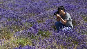 Yong-Seok Oh vereeuwigt lavendel voor L'Occitane