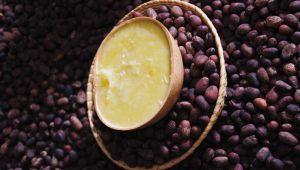 乳木果,冬季美容妙方