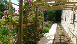圣谷修道院花园: 玫瑰之路隆重落成!