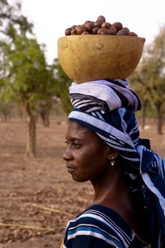 Shea Butter : A Sustainable Partnership with the Women of Burkina Faso