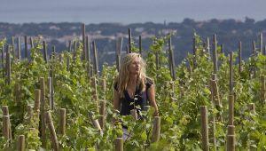 Soledad Tari: 來自Domaine de la Bégude 的釀酒師