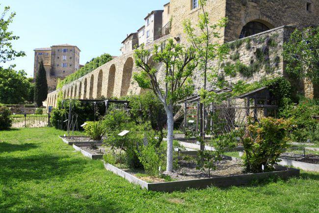 漫遊染料植物保育園