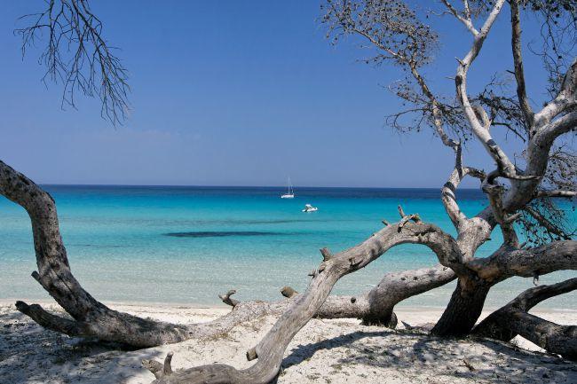 Saleccia 海灘